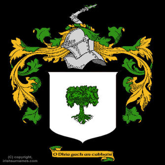 O'Connor (Don) Clan Coat of Arms